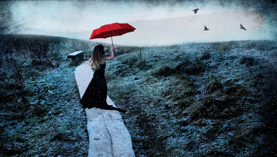 Marija Kablytė: Žiemos žiedų laukai