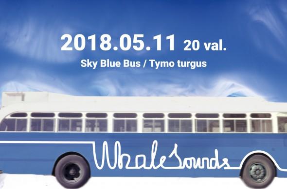fb-virselis-autobusu