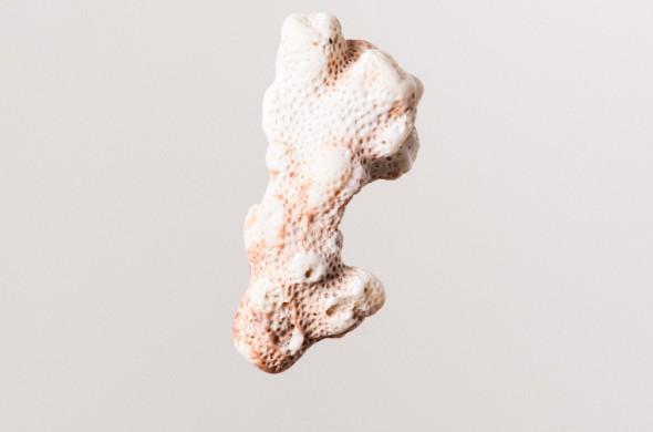 Marie Lukasiewicz, is serijos Uz koralu baltumo